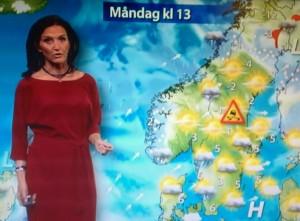 Förolämpa inte, omyndigförklara inte, det svenska folket om halka ni själva inte kan bedöma!